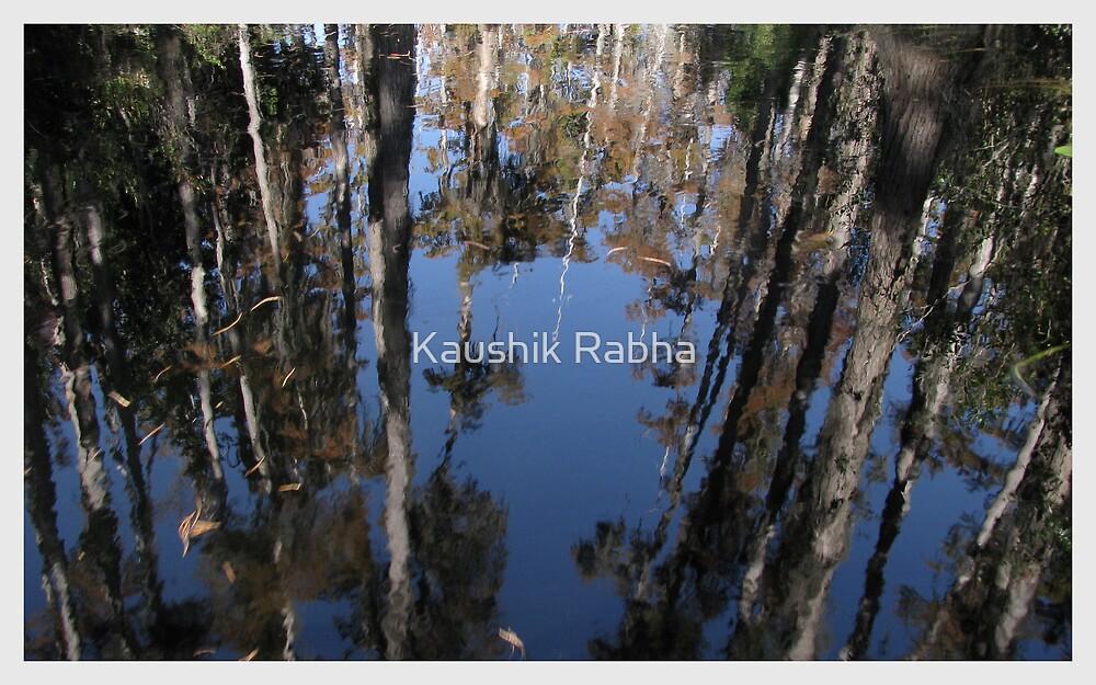 Reflections by Kaushik Rabha
