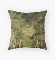 Windy Ridge National Park, SD Throw Pillow