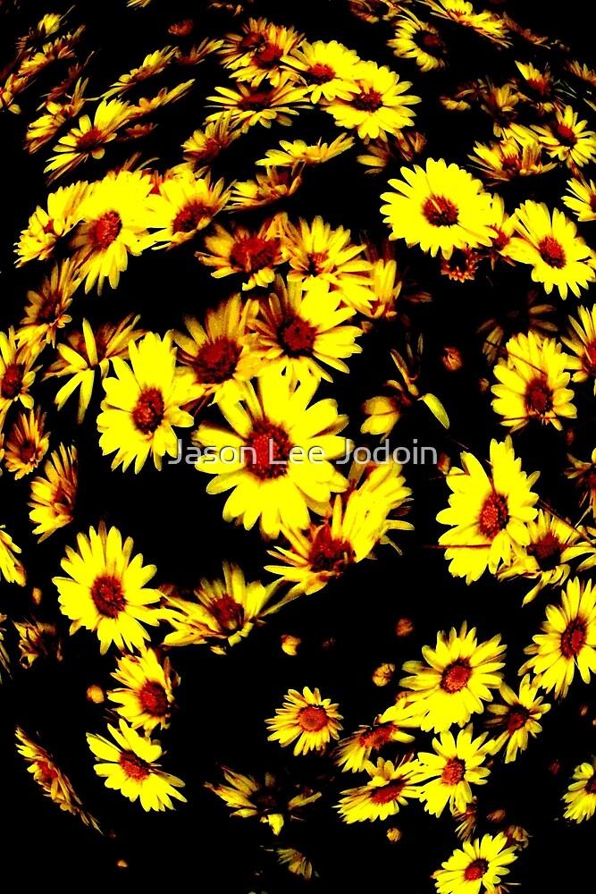 Cascading Flowers by Jason Lee Jodoin