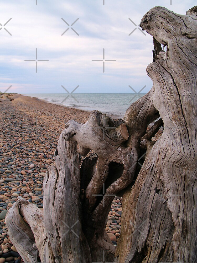 Windy Day on Whitefish Point III by Megan Noble