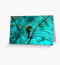 Seahorse in Bonaire Greeting Card