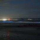 Bioluminescence Morro Bay by Cathy L. Gregg