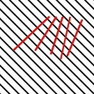 BLACK LINES RED LINES by Thomas Barker-Detwiler