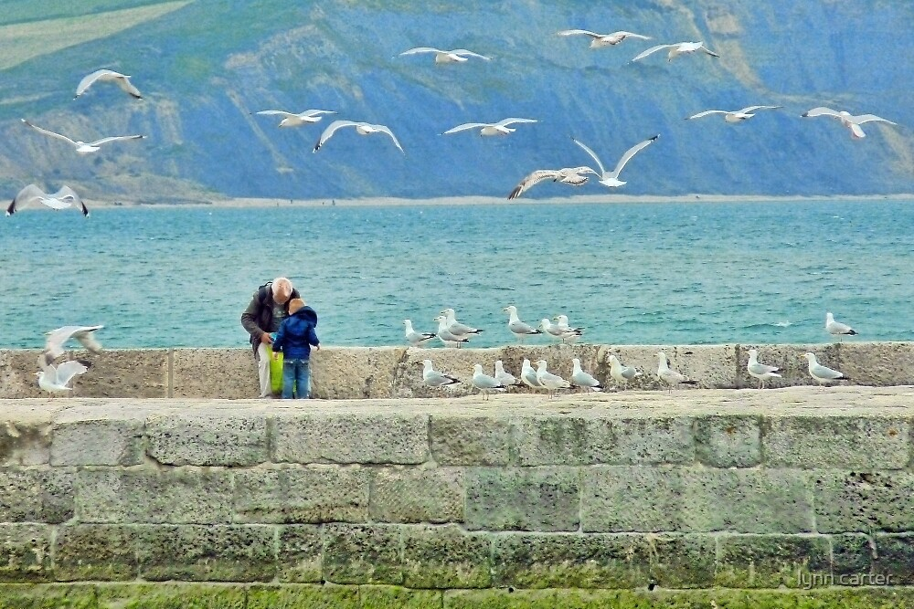 Feeding The Gulls At Lyme by lynn carter