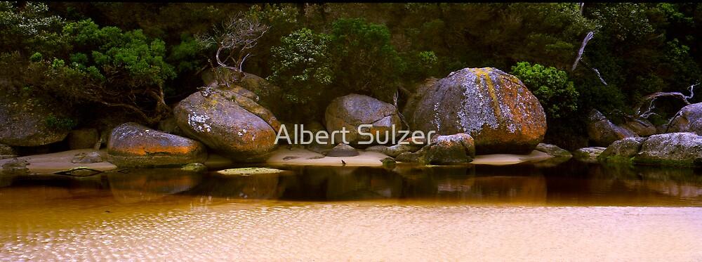 Tidal River Rocks 02 by Albert Sulzer