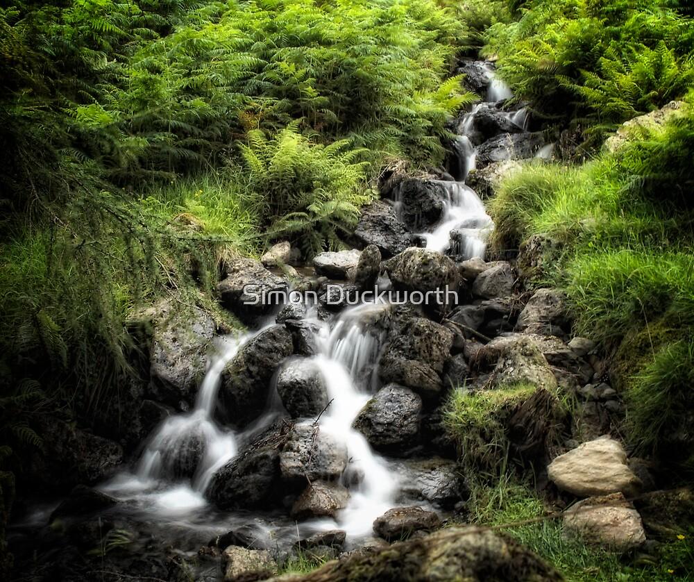 Cascade by Simon Duckworth