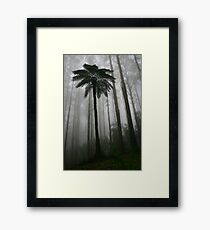 tree fern and mountain ash Framed Print