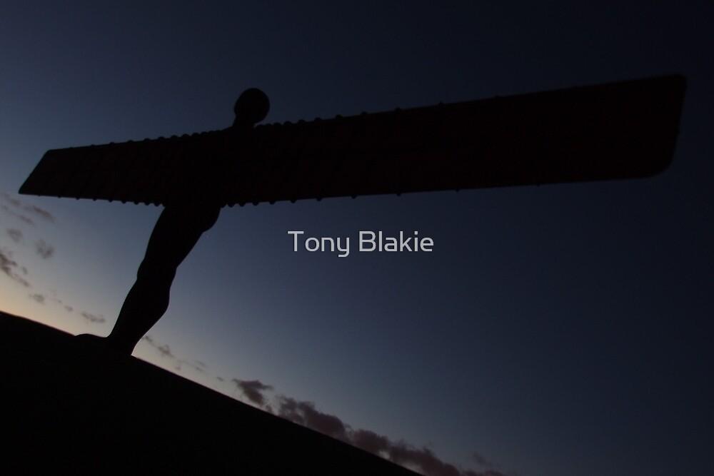 Angel at dusk by Tony Blakie