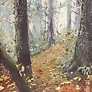 Foggy Path by JennyArmitage