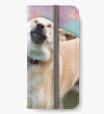 Frisbee Doge iPhone Wallet/Case/Skin