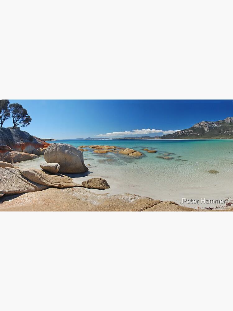 Fotheringate Beach by PeterH