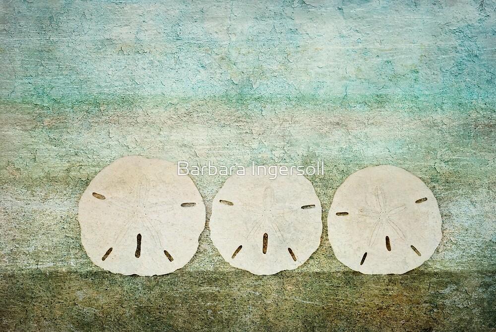 Sand Dollars by Barbara Ingersoll