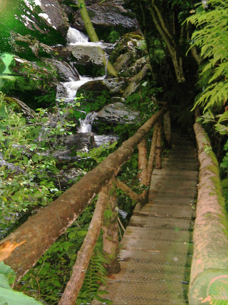 BRIDGE TO THE FALLS by Spiritinme