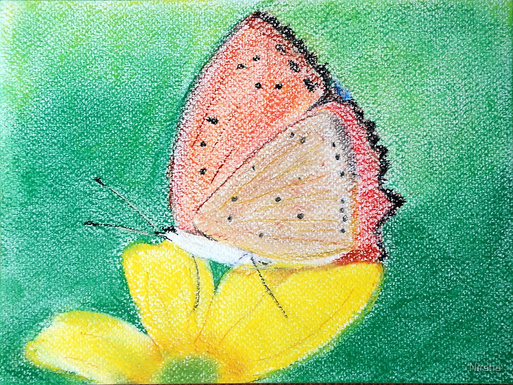 butterfly by Nirsha