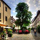 Cobbled Regensburg Courtyard by Tom Gomez