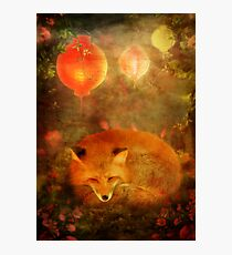 Fox Dreams Photographic Print