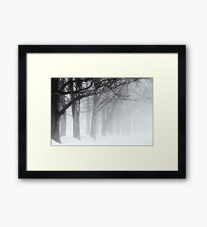 Black Limbs Framed Print
