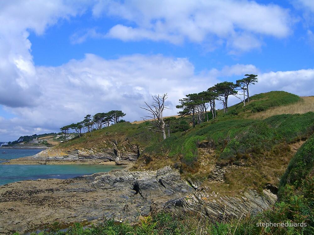 cornish coast by stephenedwards