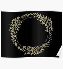 Elder Scrolls online Poster