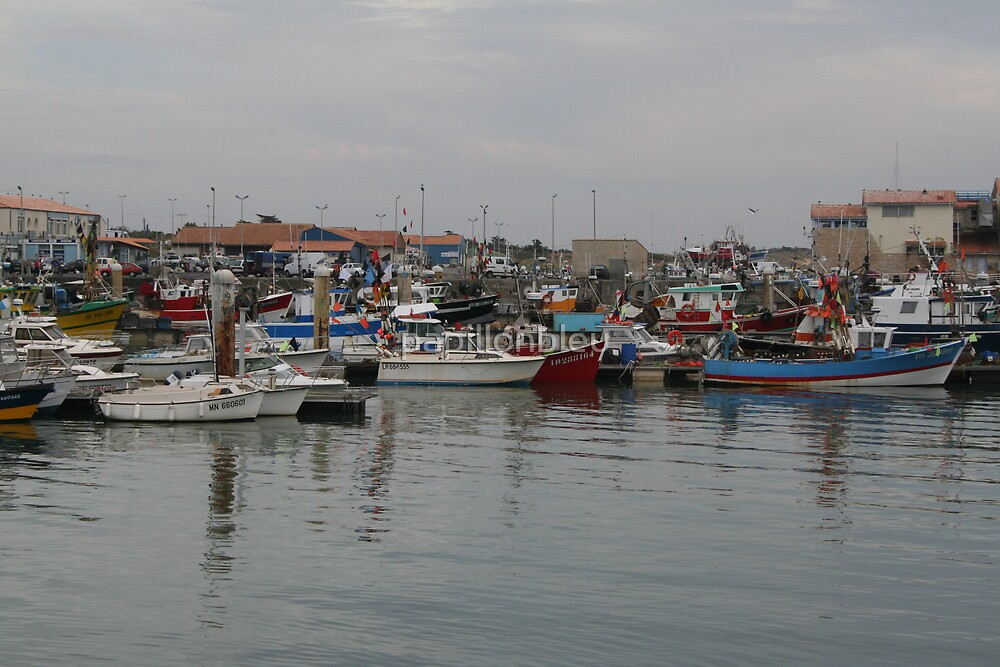 The fishing Port of La Cotinière by Pamela Jayne Smith