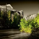 Yosemite National Park 07 by Daniel H Chui