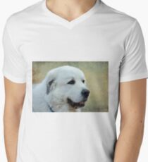 Big Doggie  Men's V-Neck T-Shirt
