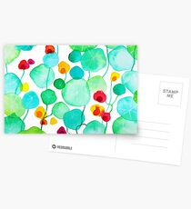 nasturtiums Postcards