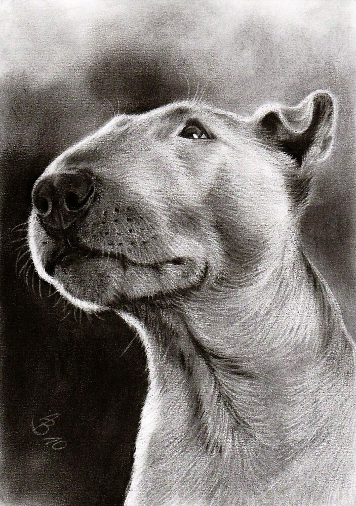 Bull Terrier Bully Dog By Artofdreams Redbubble - Bull terrier art