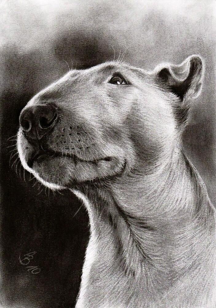 Bull Terrier Bully Dog By Artofdreams Redbubble - Bull terrier art