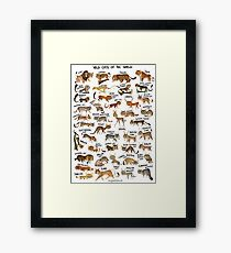 Wild Cats of the World Framed Print