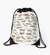 Wild Cats of the World Drawstring Bag