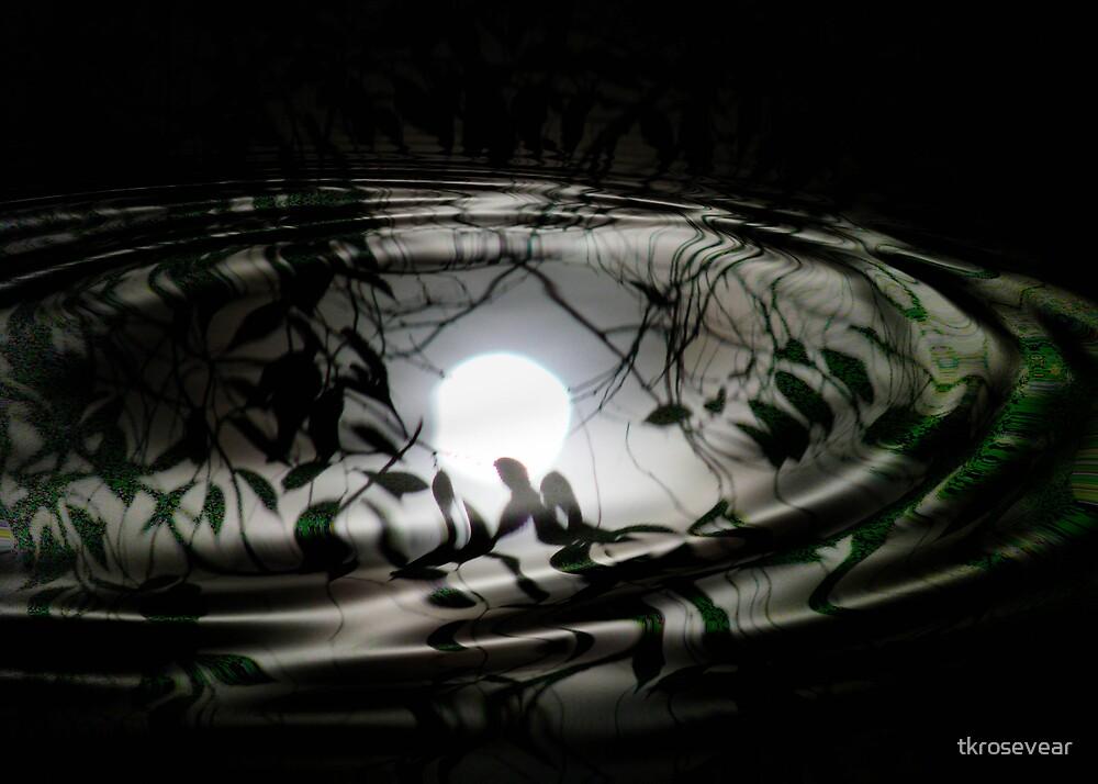 Moon Ripples by tkrosevear