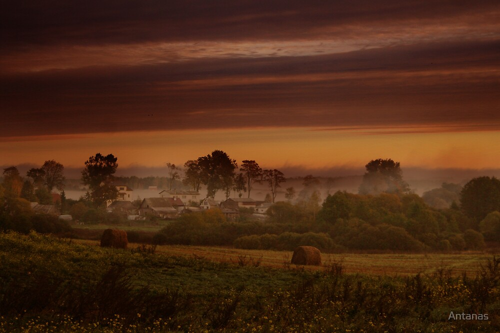 Fog in village by Antanas