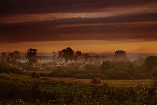 Fog in village by Antanas