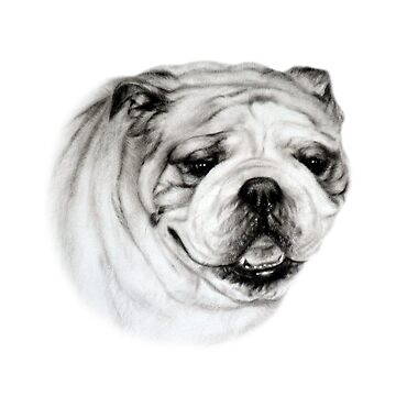 Bulldog by Danguole
