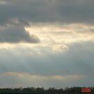 Sun Beam by danabee