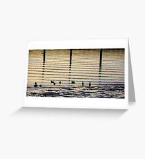 Sunrise Ducks Greeting Card