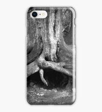one tree  iPhone Case/Skin