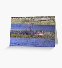 Gator on the bank Greeting Card