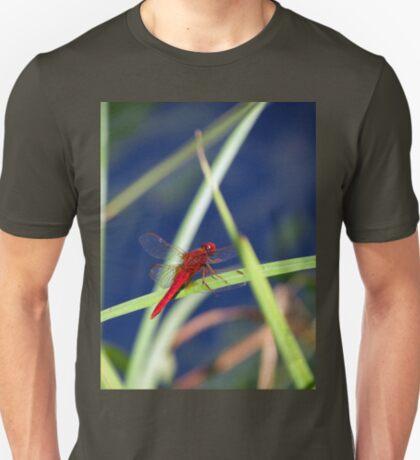Dragonfly 1 T-Shirt