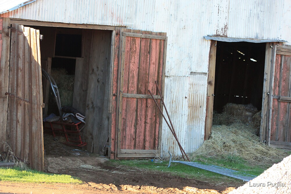 Inside The Old Barn by Laura Puglia