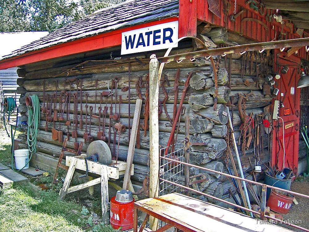 Water Shed by Tamara Valjean