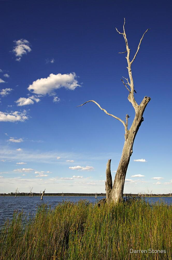 Lake Fyans by Darren Stones