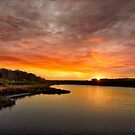 Huntington Beach State Park Sunset by TJ Baccari Photography