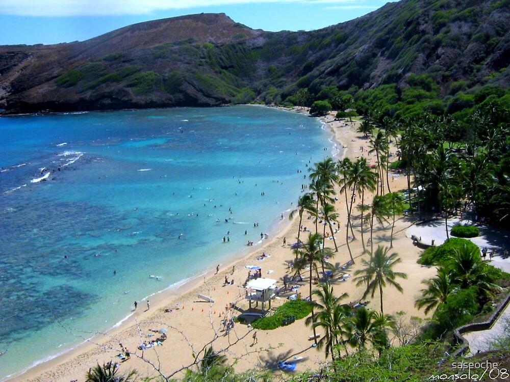 Honolulu(Hawaii) by saseoche