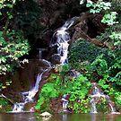 Little Waterfall by Kallian