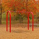 Lineberger Park 5 by Rodney Lee Williams