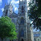 York Minster, York, England by Bev Pascoe