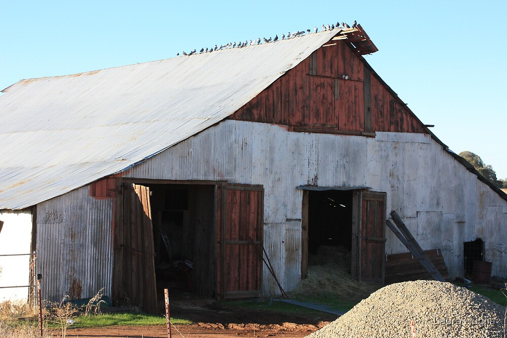 Old Barn Up Close by Laura Puglia