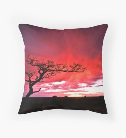 Condemnation Throw Pillow